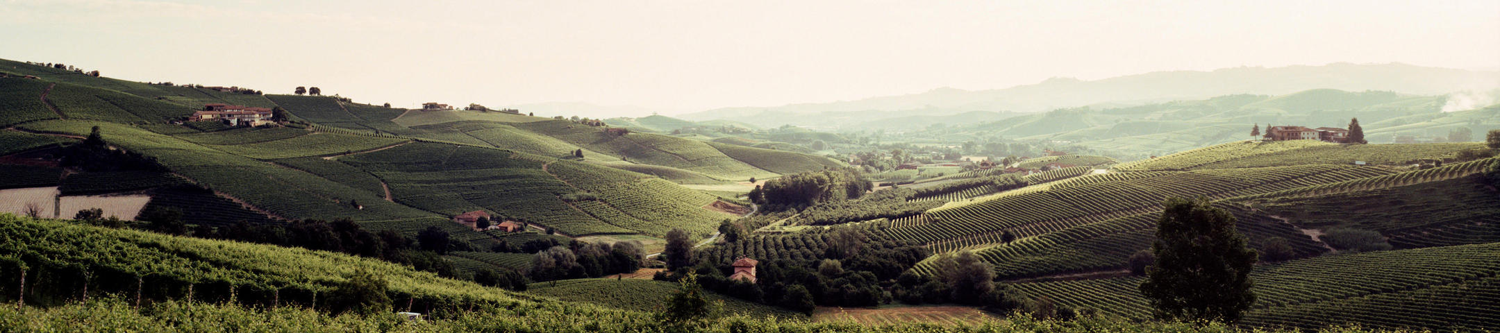 Getting to grips with Piedmont _