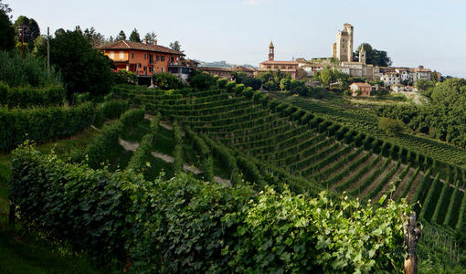New: Barolo 2016 & Barbaresco 2017 - Spectacular expressions of Nebbiolo from Piedmont