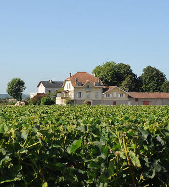 Chateau Simard
