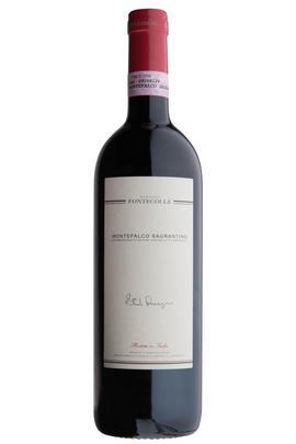 2007 Sagrantino di Montefalco, 'Ducciochi', Fontecolle, Umbria