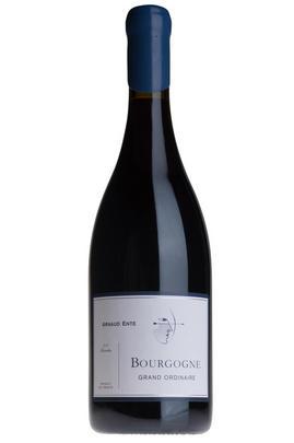 2009 Bourgogne Grande Ordinaire, Domaine Arnaud Ente