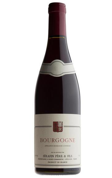 2011 Bourgogne Rouge, Domaine Christian Sérafin
