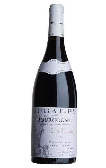 2011 Bourgogne Rouge Halinard, Domaine Dugat-Py