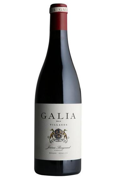 2014 Galia, El Regajal, Spain
