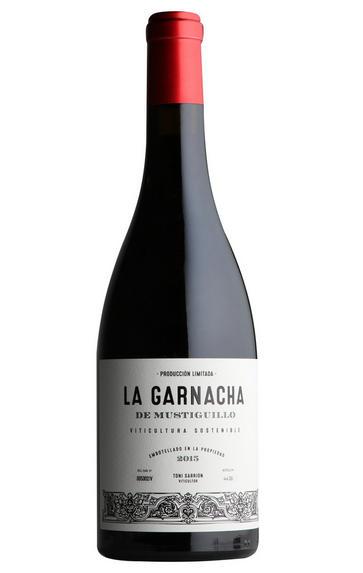 2015 La Garnacha de Mustiguillo, Valencia, Spain