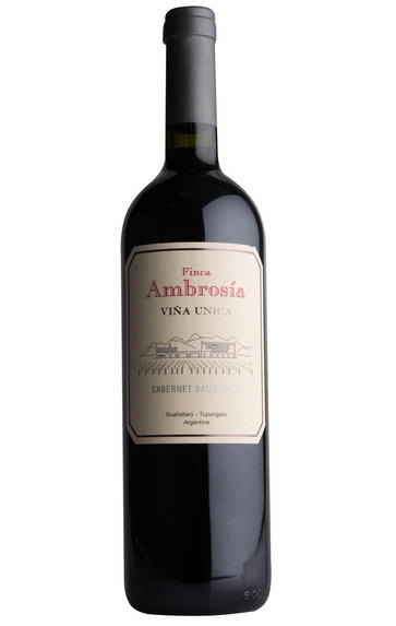 2015 Finca Ambrosía, Viña Única Cabernet Sauvignon, Gualtallary, Argentina
