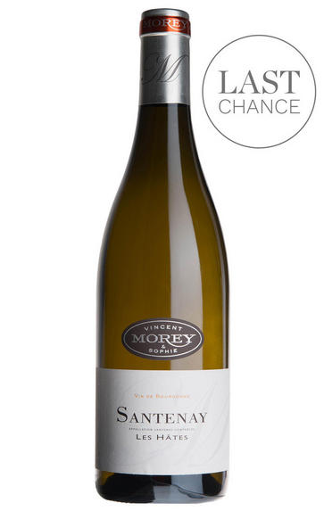 2016 Santenay Blanc, Les Hâtes, Vincent & Sophie Morey, Burgundy