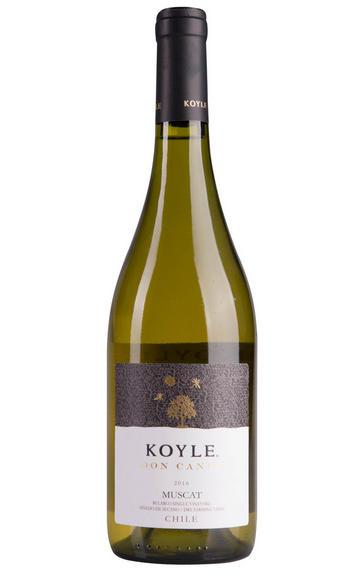 2016 Viña Koyle, Don Cande Muscat, Bularco Vineyard, Itata Valley, Chile