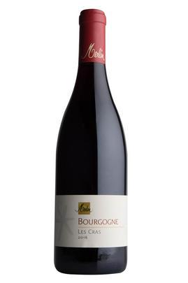 2016 Bourgogne Rouge, Les Cras, Olivier Merlin, Burgundy