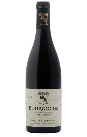 2017 Bourgogne Cote d'Or, Pinot Noir, Domaine Coche-Bizouard, Burgundy