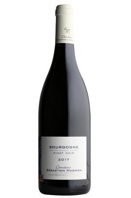 2017 Bourgogne Pinot Noir, Domaine Sébastein Magnien, Burgundy