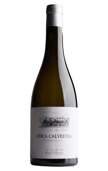 2018 Finca Calvestra, Merseguera, Bodega Mustiguillo, Valencia, Spain
