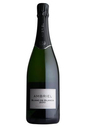 2010 Ambriel, Blanc de Blancs, Sparkling, Sussex