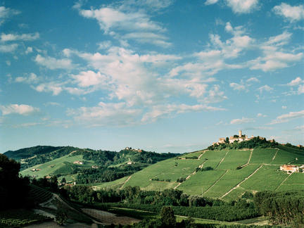The Wines of Piedmont, Wednesday 17th July 2019