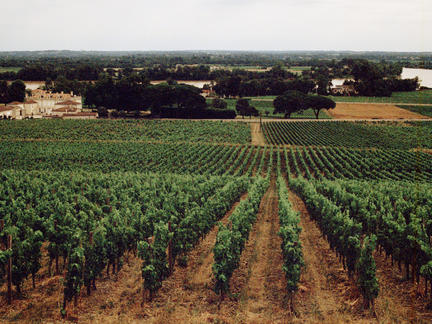 Introduction to Bordeaux, Thursday 6th February 2020