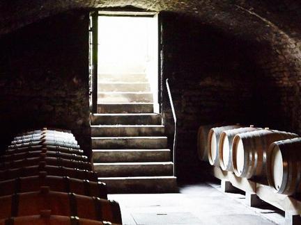 White Burgundy Tasting, Wednesday 19th February 2020