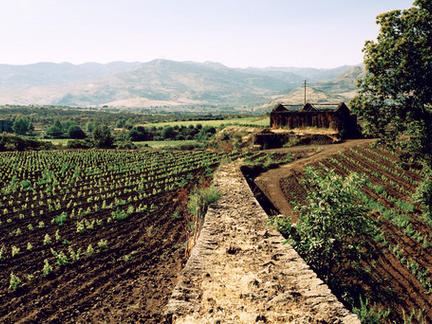 Introduction to Italy, Thursday 7th May 2020
