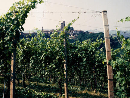 One Day Italy Wine School, Saturday 22nd February 2020