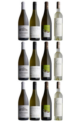 Sauvignon Blanc from around the World, 12-Bottle Mixed Case