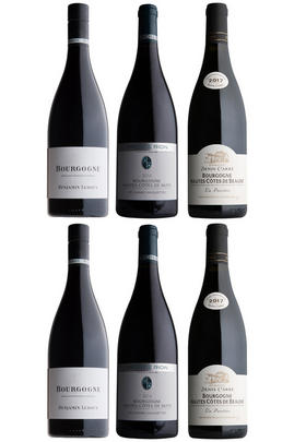 Red Burgundy, Six-Bottle Mixed Case