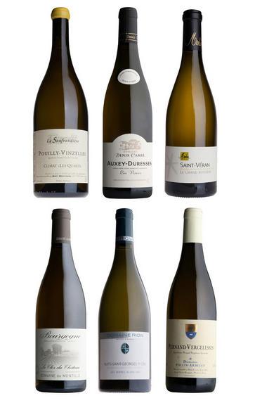 Burgundy Whites, Six-Bottle Mixed Case