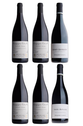 Benjamin Leroux Pinot Noir Selection, Six-Bottle Mixed Case