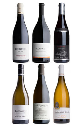 Bourgogne Selection, Six-Bottle Mixed Case