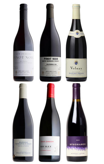 Pinot Noir Selection, Six-Bottle Mixed Case