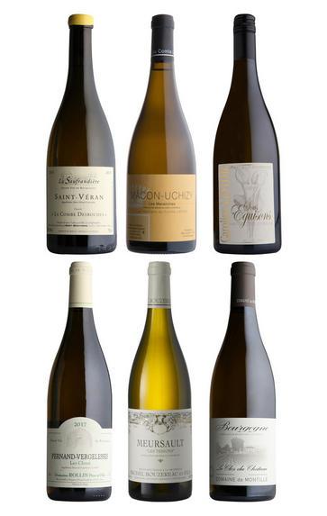 Taste of White Burgundy, Six-Bottle Mixed Case