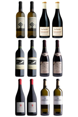 Buyers' Highlights: 12-Bottle Mixed Case