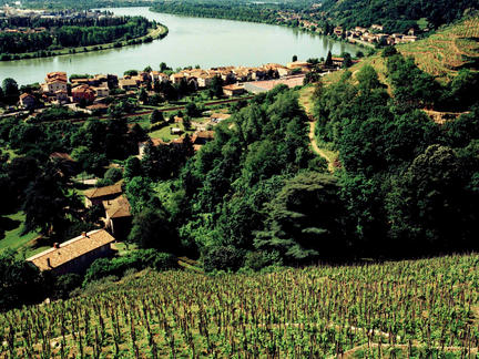 Introduction to Rhone, Tuesday 24th November