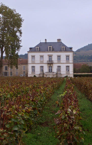 Meursault, Puligny and Chassagne, Wednesday 2nd December 2020