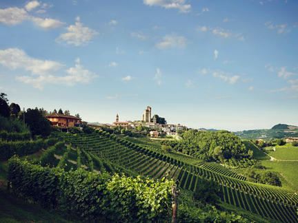 Wines of Italy, Wednesday 17th March 2021