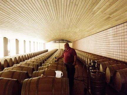 Rioja and Ribera del Duero Masterclass, Thursday 4th March 2021