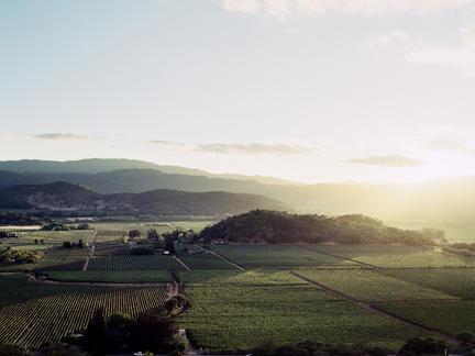 Exploring California's wines, Tuesday 27th April 2021